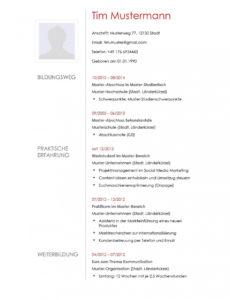 Eine Probe von Lebenslauf Muster 12  Lebenslaufdesignsde Vorlage Lebenslauf Geflüchtete