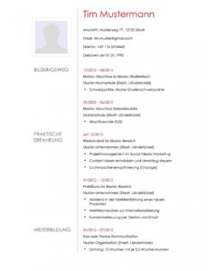 Lebenslauf Muster 12  Lebenslaufdesignsde Vorlage Lebenslauf Pinterest