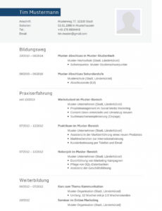 von Lebenslauf Muster Für Informatiker  Lebenslauf Designs Lebenslauf Vorlage Schweiz Ingenieur
