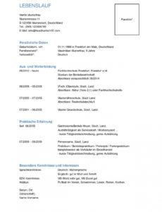 von Lebenslaufvorlagen  Headhunter100  Bewerbungsschreiben Lebenslauf Vorlage Ohne Ausbildung