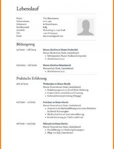 10+ Lebenslauf Muster Österreich  Wieniebago Vorlage Lebenslauf Österreich