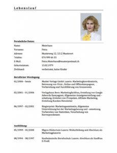 12+ Lebenslauf Vorlage Foto  Tchoups Market Lebenslauf Vorlage Schweiz Nach Der Ausbildung