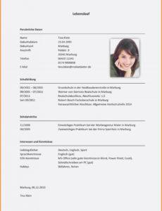 Eine Probe von  16+ Lebenslauf Berufserfahrung Muster  Soleatablao Vorlage Lebenslauf Berufserfahrung