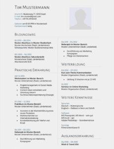 Eine Probe von  Basic Akademischer Lebenslauf Arzt Wissenschaftlicher Lebenslauf Vorlage Lebenslauf Niederlande