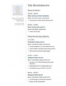 Eine Probe von  Lebenslauf Muster Für Manager  Lebenslauf Designs Lebenslauf Vorlage Ceo