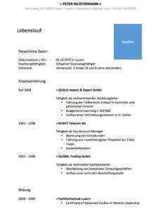 Eine Probe von  Lebenslauf Vorlage Im Wordformat (Schweiz)  Mustervorlagech Vorlage Lebenslauf Ch