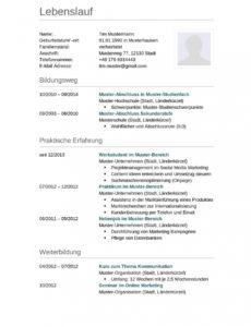 Lebenslauf Muster Für Lkwfahrer  Lebenslauf Designs Vorlage Lebenslauf Technische Berufe