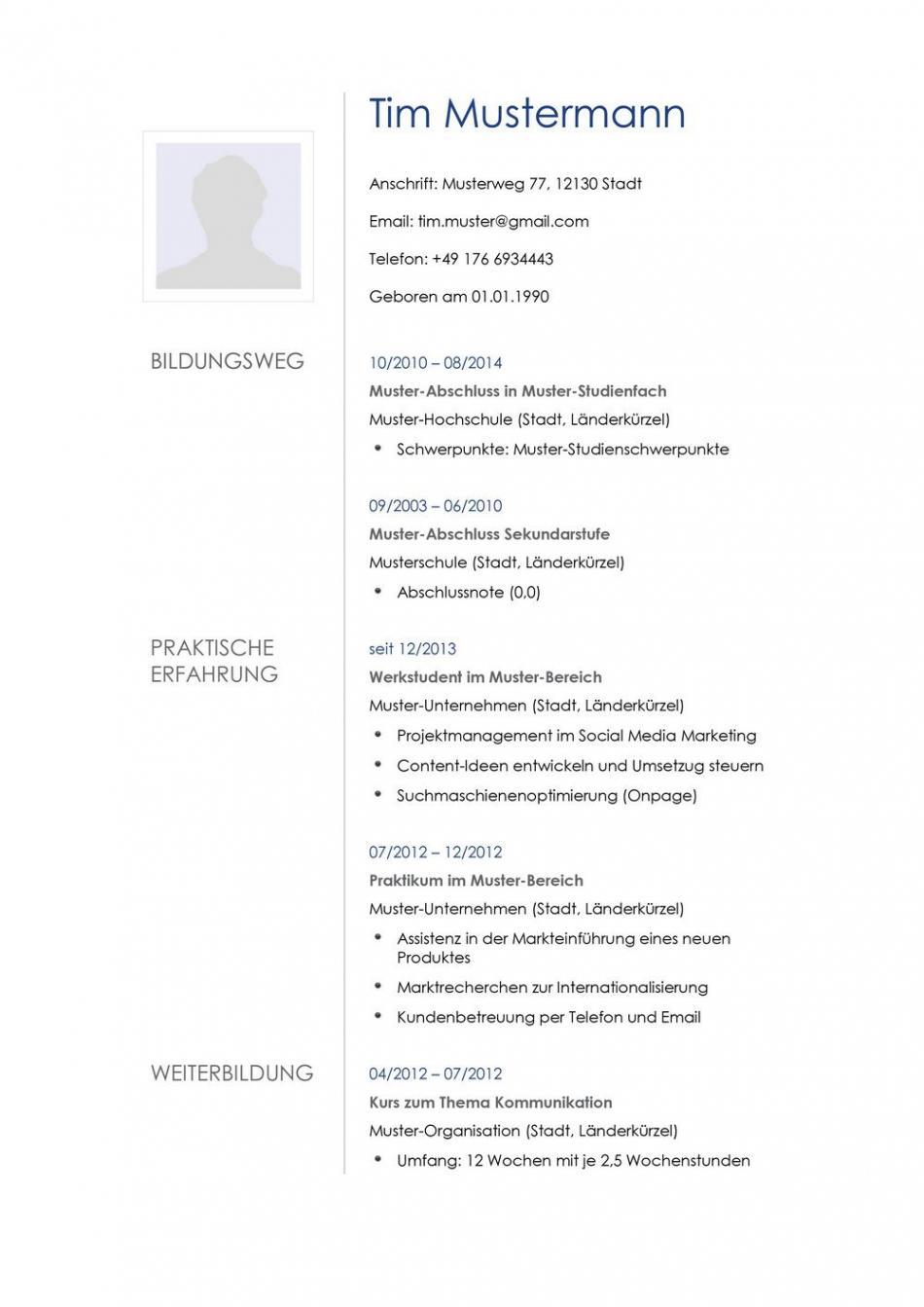 Lebenslauf Muster Für Multimediakünstler  Lebenslauf Designs Vorlage Lebenslauf Controller