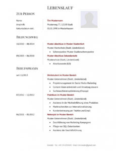 Lebenslauf Muster Für Verkäufer  Lebenslauf Designs Lebenslauf Muster Ausbildung Verkäuferin