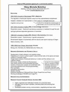 Porbe von  10+ Lebenslauf Textform  Terraindance Vorlage Lebenslauf Dissertation