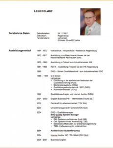 Porbe von  12+ Lebenslauf Vorlagen Metall  Jrobinberry Lebenslauf Vorlage Modern Schüler