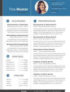 Porbe von  15+ Innovativer Lebenslauf  Mancusi Vorlage Innovativer Lebenslauf
