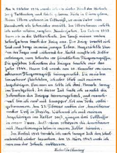 Porbe von  16+ Muster Handschriftlicher Lebenslauf  Food Systems Film Vorlage Lebenslauf Handschriftlich