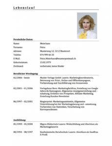Porbe von  Lebenslauf Was Gehort Rein Download Lebenslauf Vorlage & Muster Für Professioneller Lebenslauf Vorlage Schweiz
