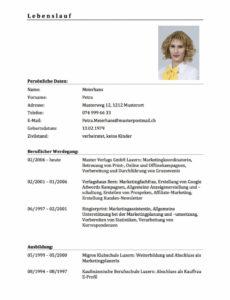 Porbe von  Oben Lebenslauf Muster 2017 Modern  Haraszti Lebenslauf Muster Modern Schweiz