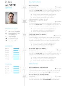 Porbe von  Premium Bewerbungsmuster 1  Lebenslaufdesignsde Vorlage Lebenslauf Mit Icons