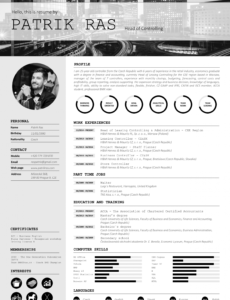 Porbe von  Resume Cv Template Graphics Blackandwhite Bw Icons Icongraphic Vorlage Lebenslauf Mit Icons
