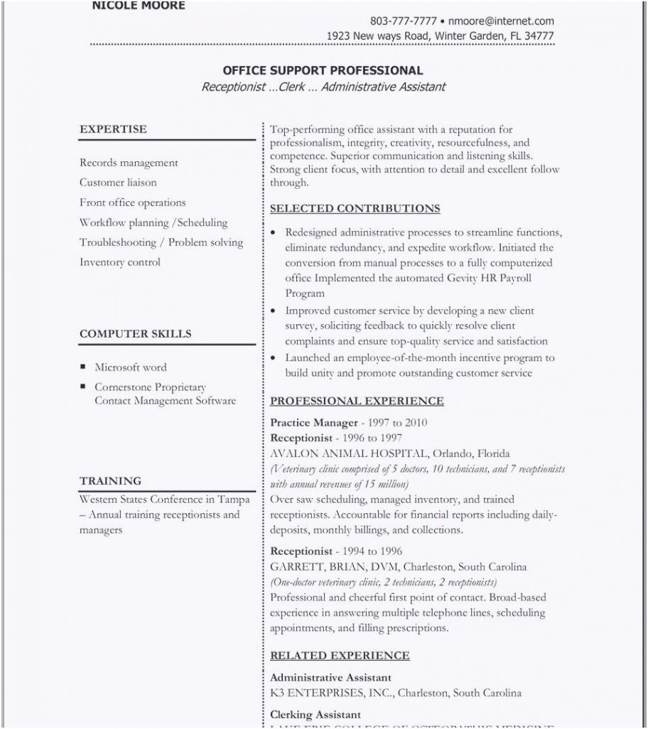 Porbe von  Schön Lebenslauf Vorlage Doc  Kreatives Muster Vorlage Lebenslauf Executive