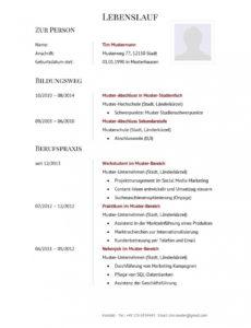 Porbe von  Tabellarischer Lebenslauf  Muster & Vorlagen  Lebenslaufdesignsde Muster Tabellarischer Lebenslauf Bewerbung