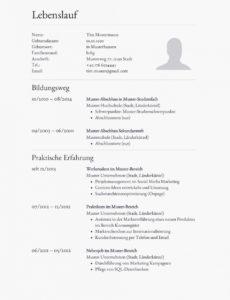 Eine Probe von  15+ Tabellarischer Lebenslauf Englisch Muster  Mnbrna Tabellarischer Lebenslauf Englisch Vorlage