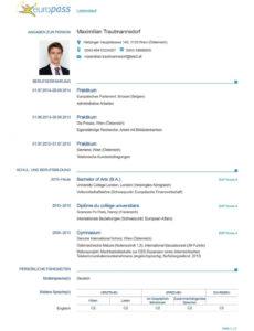 Eine Probe von  Der Perfekte Lebenslauf Europass « Diepresse Muster Europäischer Lebenslauf Vorlage Word