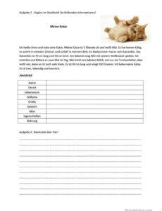 Beispiel Steckbrief Auf Französisch Vorlage Doc Bearbeitbar