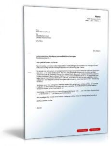 Bild Sonderkündigung Handyvertrag Vorlage  Kostenlos