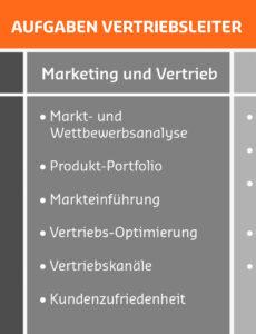 Sampler Stellenbeschreibung Vertriebsleiter Vorlage Excel Frei
