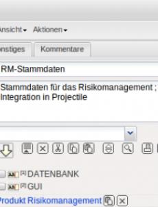 Beispiel Risikomanagement Handbuch Vorlage Doc Bearbeitbar