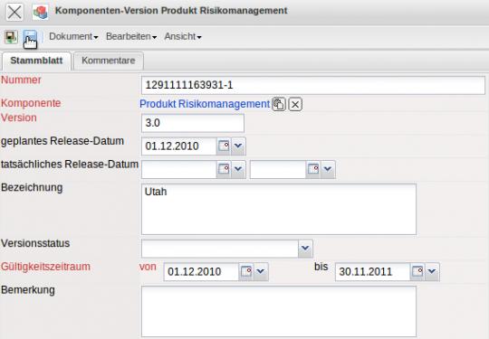Risikomanagement Handbuch Vorlage PDF Frei