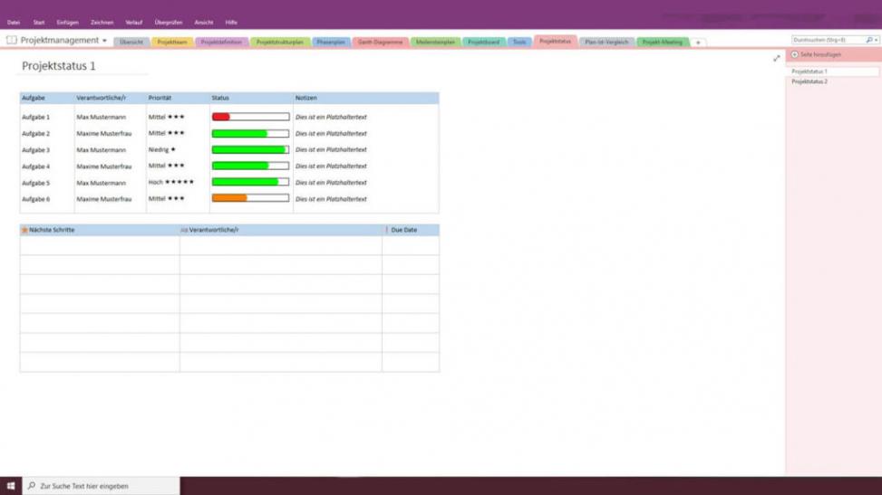 Sampler Meilensteine Projektmanagement Vorlage PDF Druckfähig